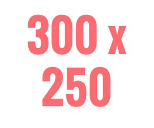 300 x 250