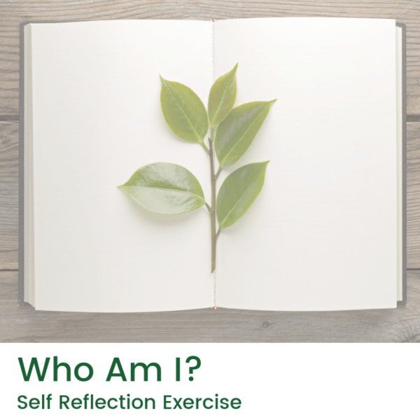 who am I self reflection exercise