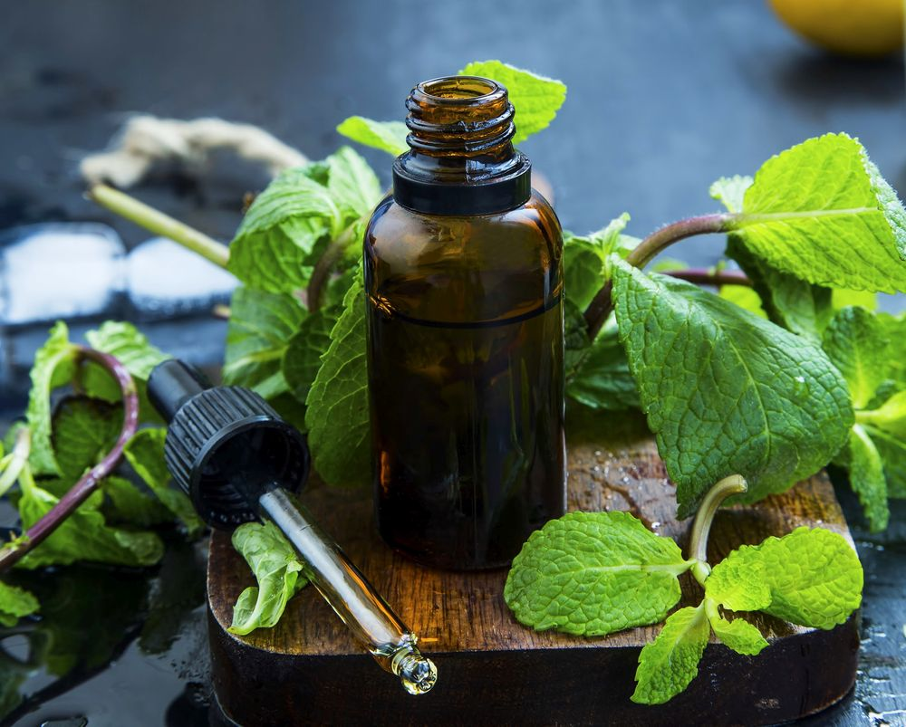 Essential mint oil in brown glass bottle with dropper, herbal me