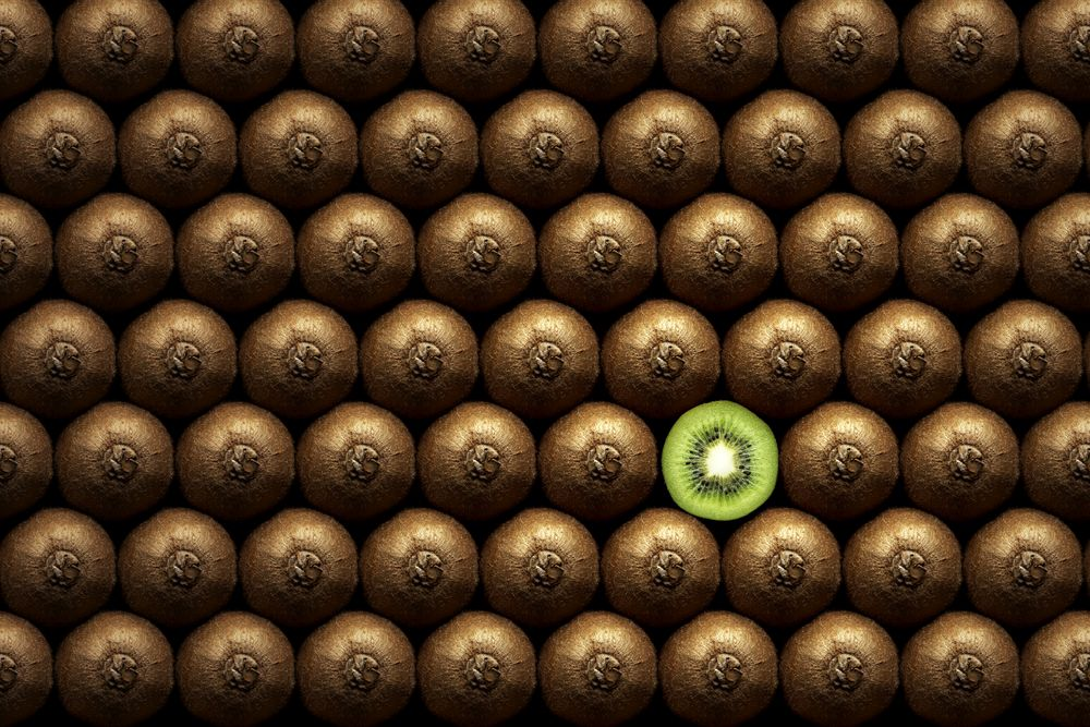 How to Stand Out from the Crowd on LinkedIn