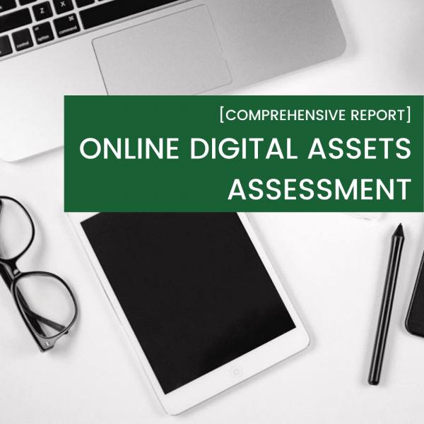 Online Digital Assets Assessment, Think Bespoke